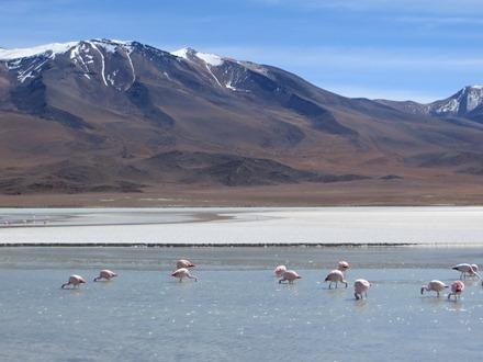 Bolivija_4