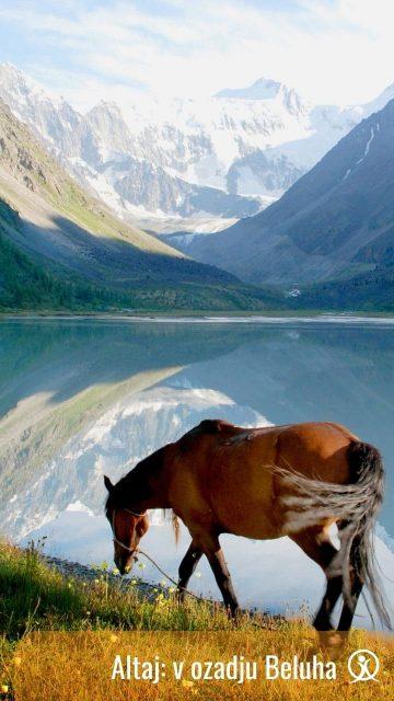 Altaj treking