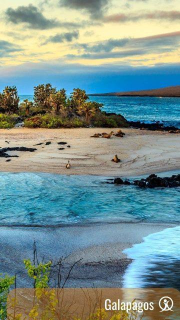 Ekvador in Galapagos