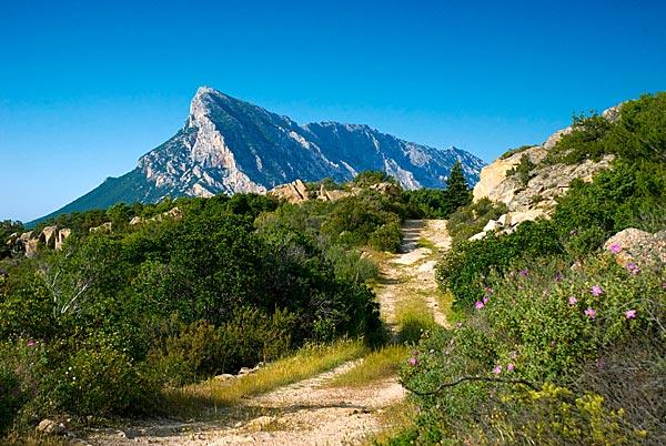 Sardinija treking in planinarjenje